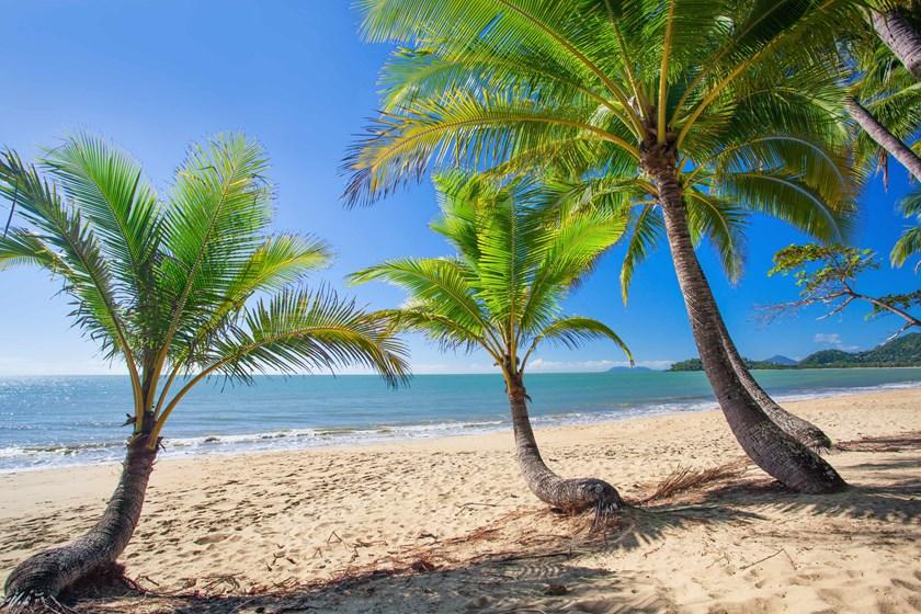 Palm Cove, Australija